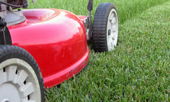 Lawn Care in Fort Worth TX Lawn Care Services in Fort Worth TX Quality Lawn Care in Fort Worth TX